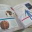 Primary Explorers : Human Body ร่างกายมนุษย์ thumbnail 6